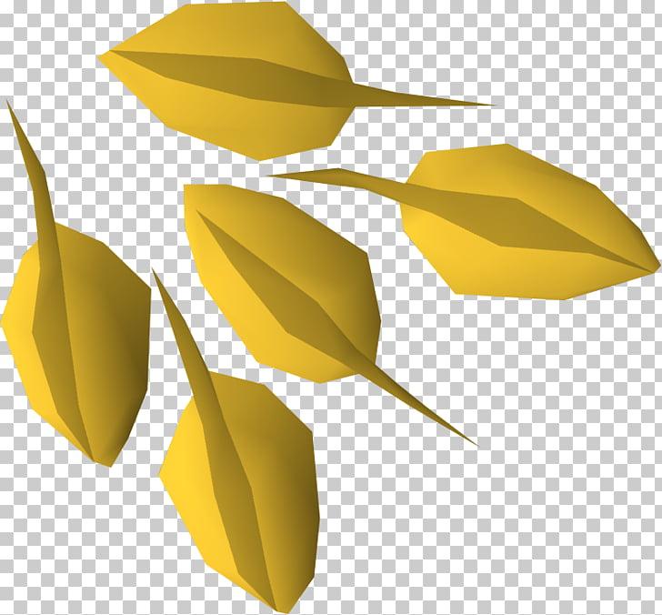 Semilla de siembra de frutales, s de sembrar semillas. PNG.