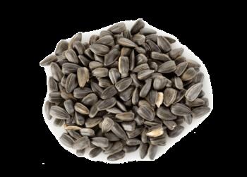 Semillas de lino, girasol, calabaza, sésamo y bayas de goji.