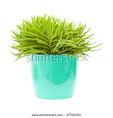 """blue Pot"" Stock Photos, Royalty."
