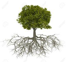 tree design.