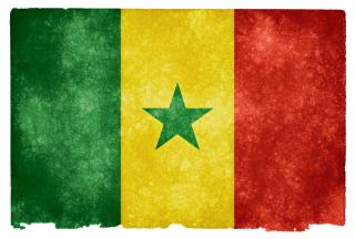 Senegal grunge flag Photo.