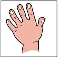 Sense of touch clipart 8 » Clipart Station.