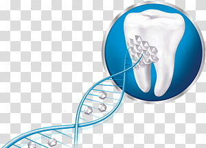 Sensodyne Repair and Protect Toothpaste Dentin.
