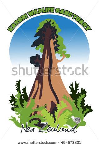 Sequoia Tree Stock Photos, Royalty.