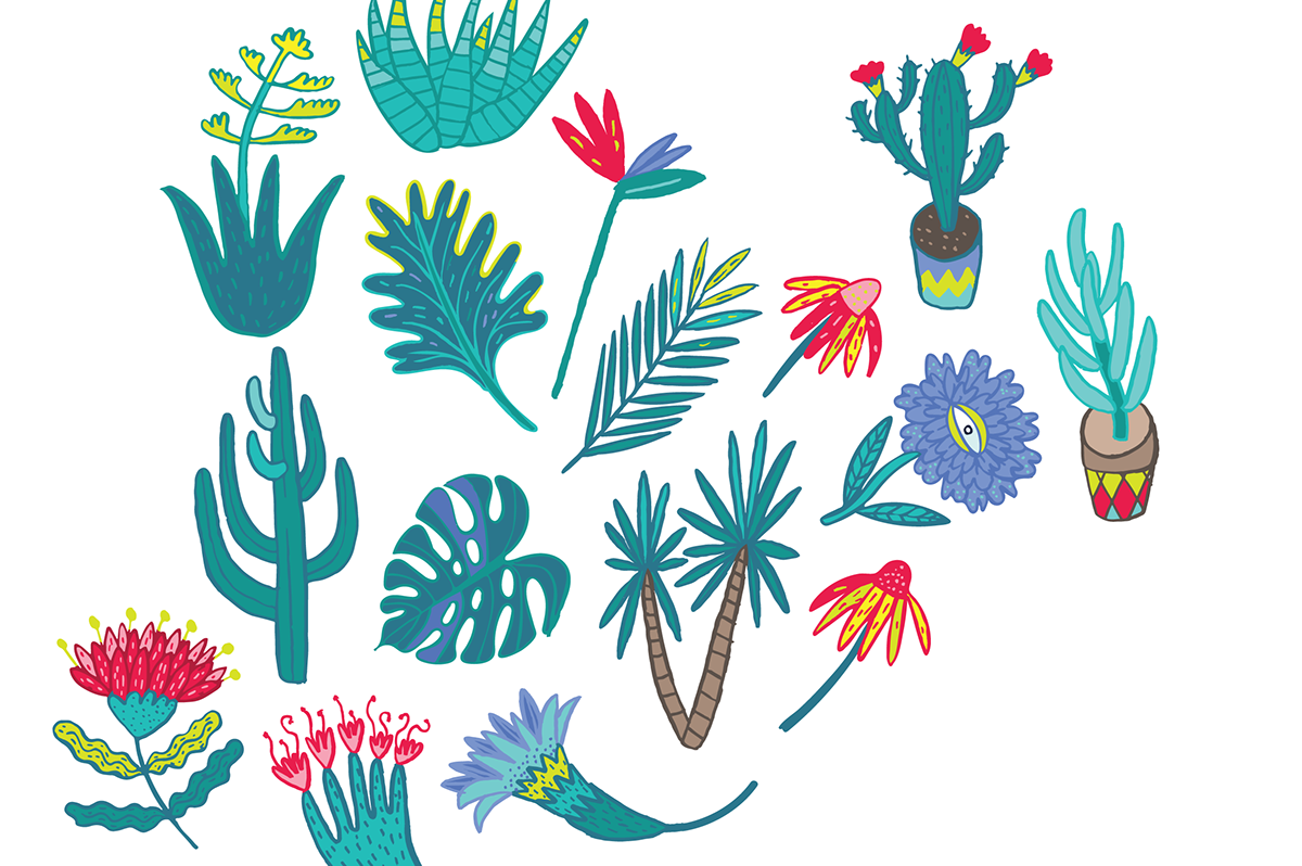 Fiesta Clip Art and Pattern Collection on Behance.