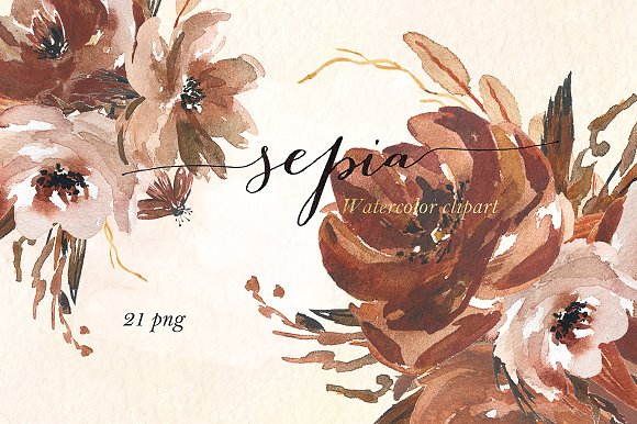 Sepia flowers. Watercolor clipart ~ Illustrations on Creative Market.