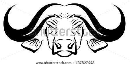 Buffalo Head Stock Images, Royalty.