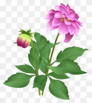 Free PNG September Flowers Clip Art Download.