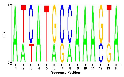 Matlab: seqlogo with uniform plot column heights.