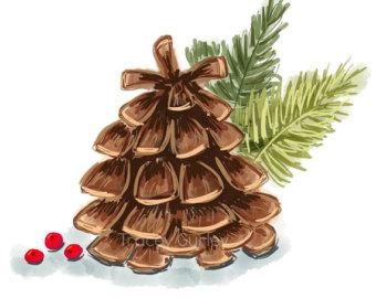 Pine cones clipart.
