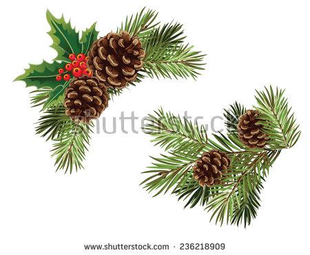 Christmas Pine Cone Fotografie, snímky pro členy zdarma a vektory.