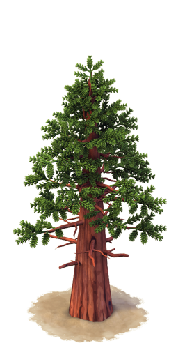 Sequoia png » PNG Image.