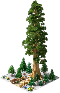 Sequoia png 4 » PNG Image.