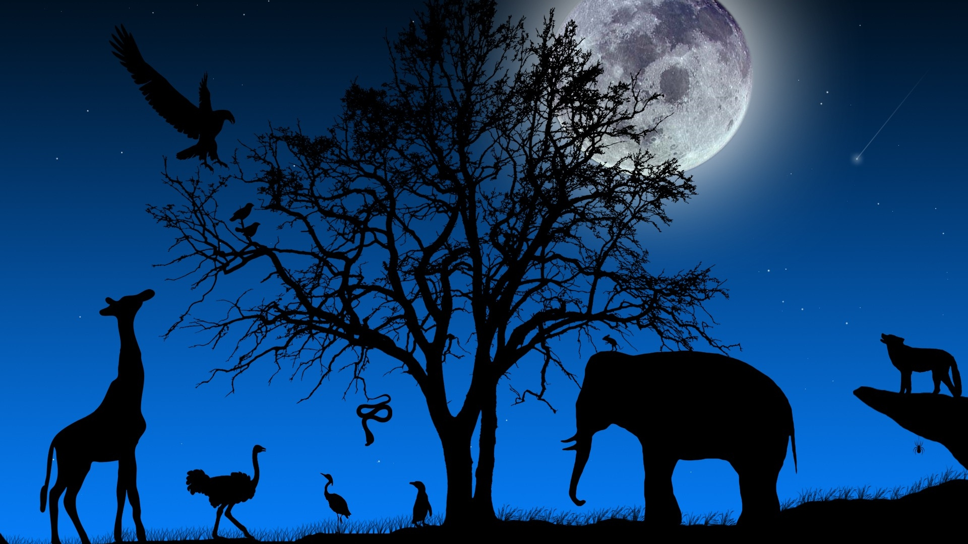 Serengeti Clip Art.