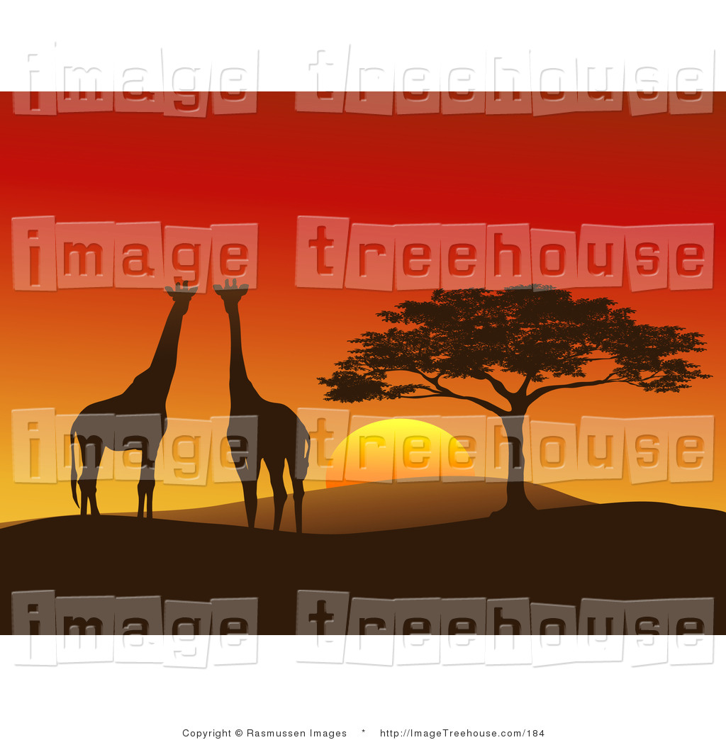 Clipart of a Giraffe Couple Silhouetted on a Hilly African.