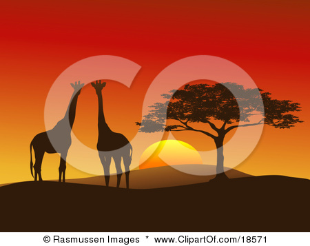 Clipart Illustration of a Giraffe Pair Silhouetted On A Hilly.