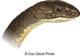 Serpentes Vector Clipart EPS Images. 22 Serpentes clip art vector.
