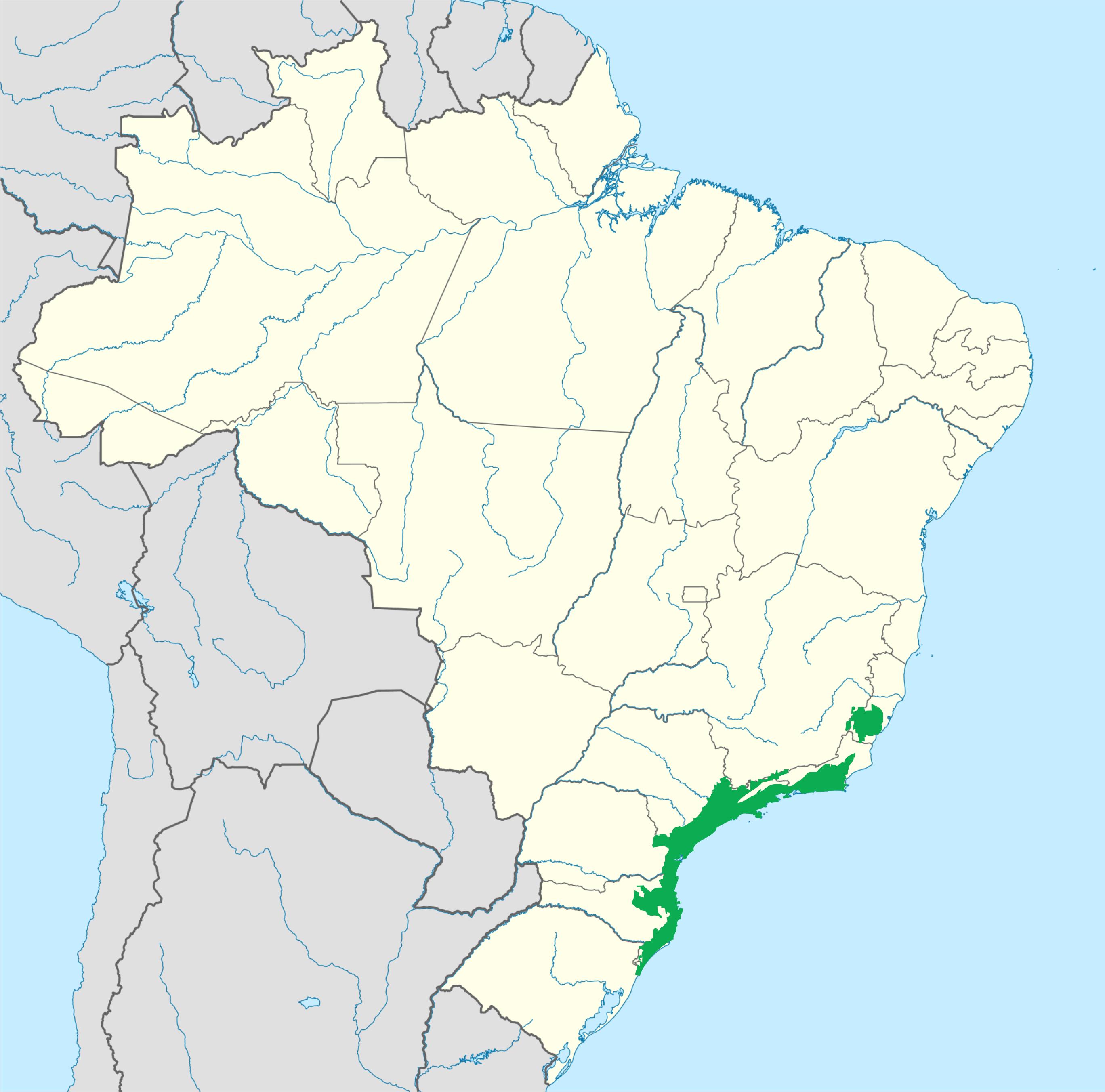 Wwf Wikipedia.