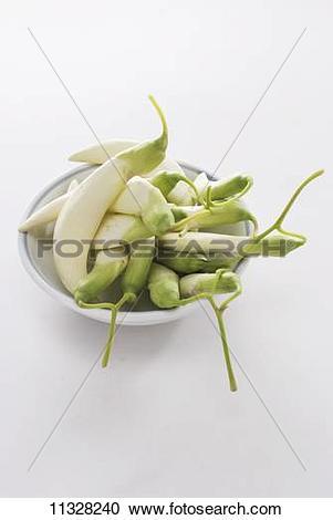 Stock Photography of Sesbania grandiflora (edible tropical plant.
