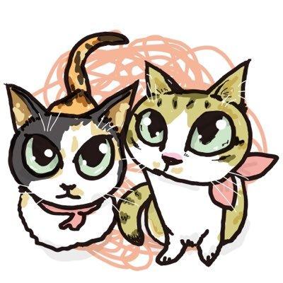 """あんこなつ on Twitter: """"『猫の寒さ対策には湯たんぽが良い!湯たんぽ."""