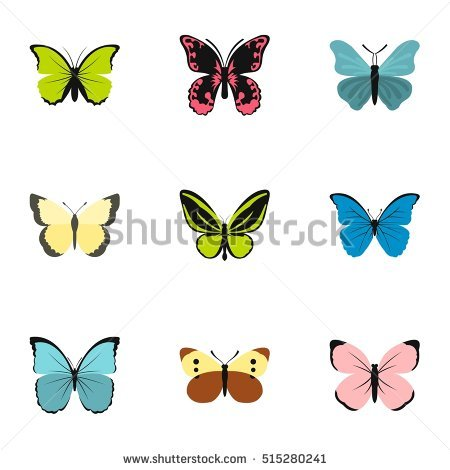 Large Moth Stock Photos, Royalty.