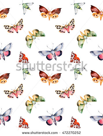 Moth Background Stock Photos, Royalty.
