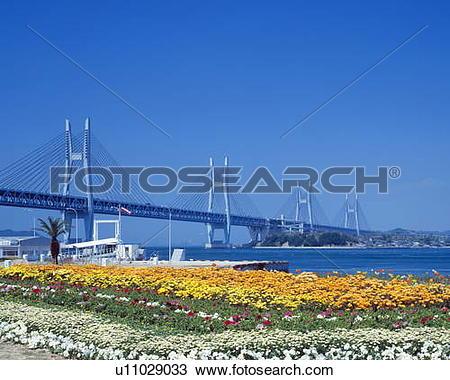 Stock Photo of Seto Ohashi bridge and flower garden, Sakaide.