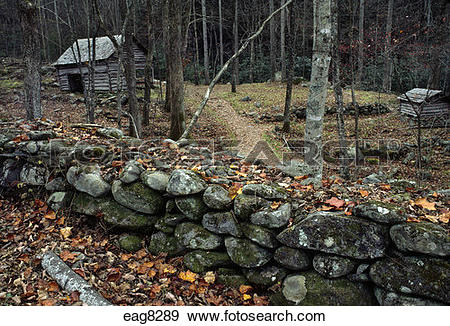Stock Photograph of SETTLERS' CABIN in AUTUMN FOREST.