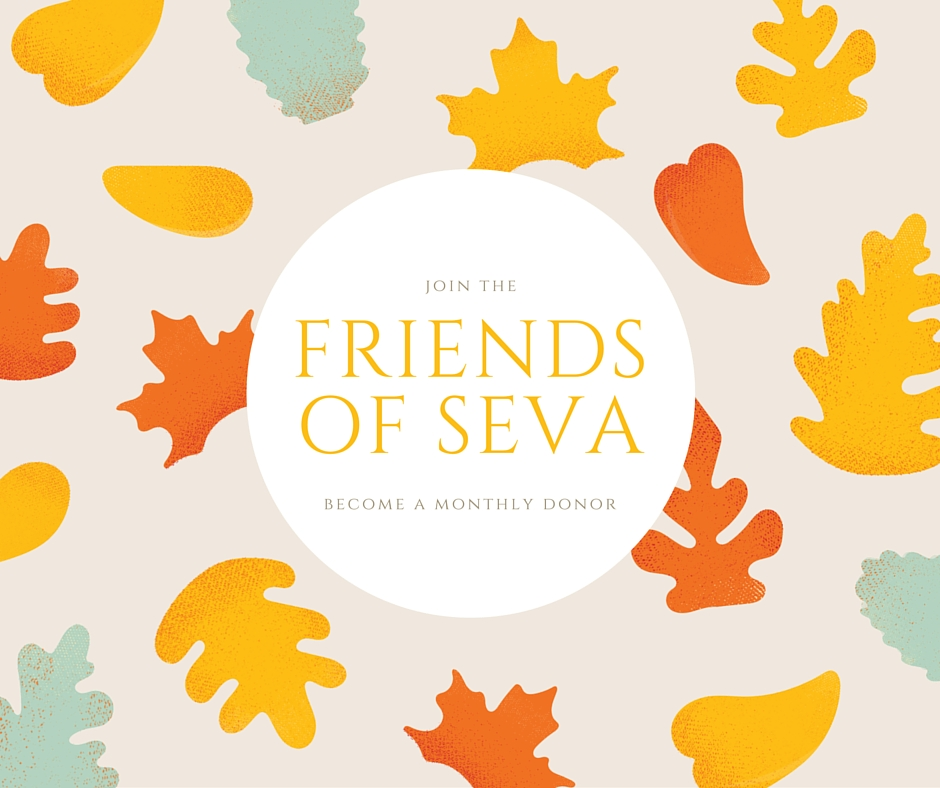 Join the 'Friends of Seva'.