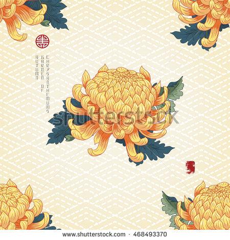 Chrysanthemum Stock Images, Royalty.