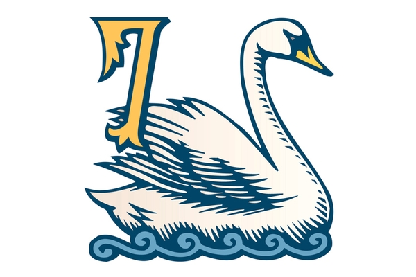The Twelve Days of Christmas: Day 7: Seven Swans.