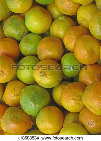 Stock Photo of Orange fruits, Sour orange, Seville orange.