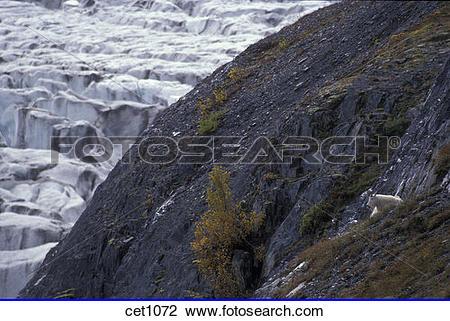 Stock Photo of USA, Alaska, Kenai Peninsula, Seward, Seward.