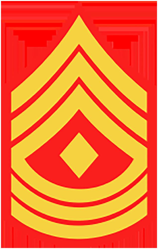 U.S. Military Rank Insignia.