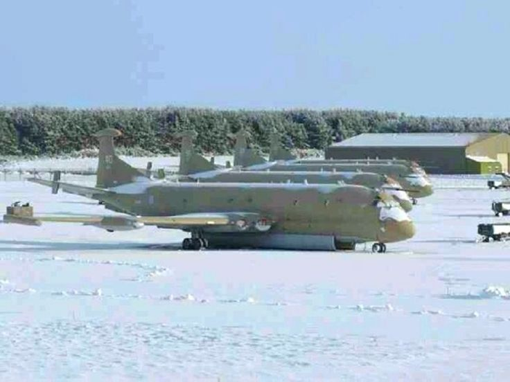 1000+ images about nimrod on Pinterest.