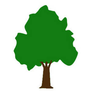 Clipart Picture of a Large Shade Tree.