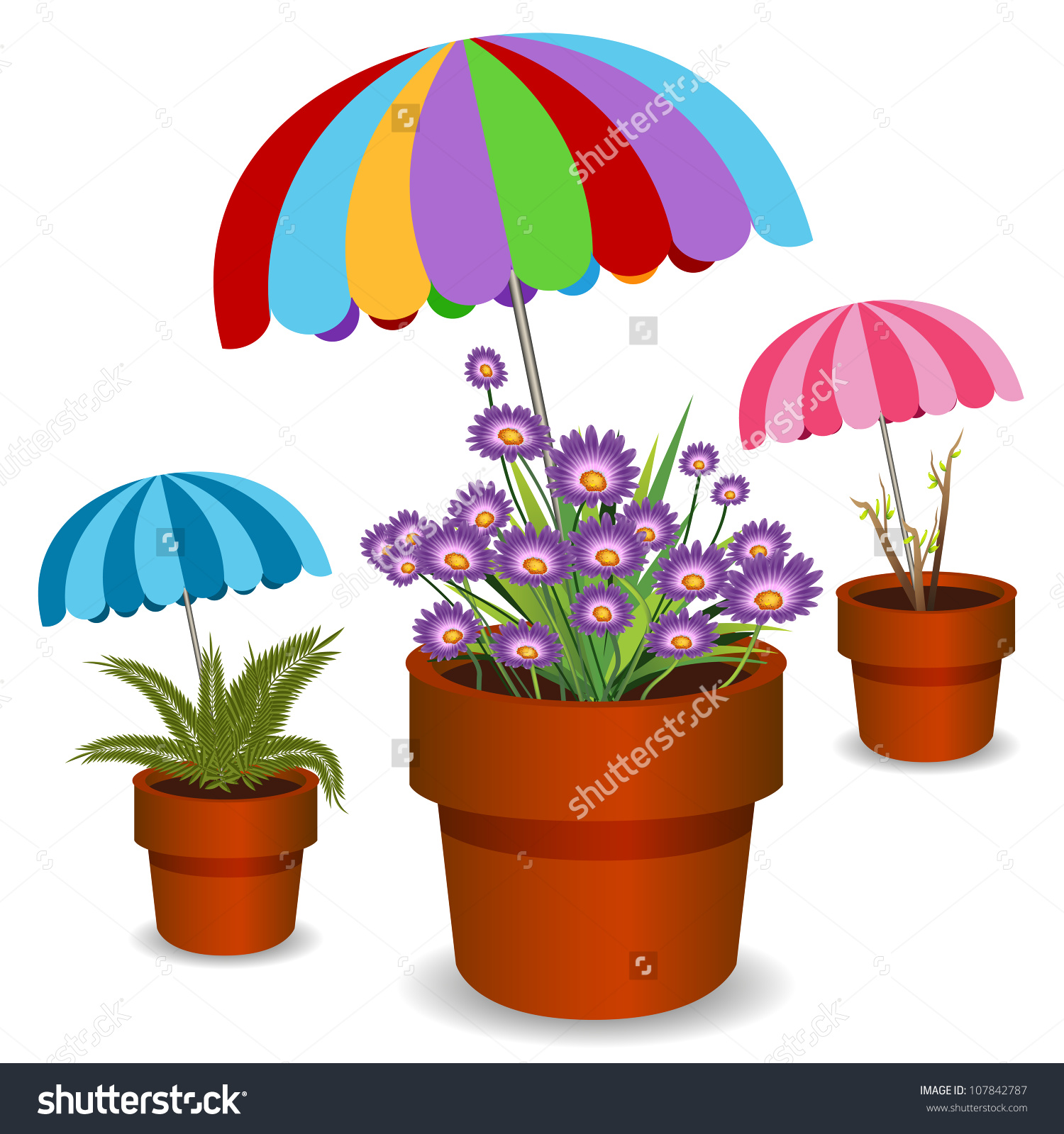 Image Potted Plants Shaded By Umbrellas Stock Vector 107842787.