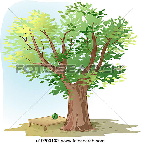 Clipart of shade, tree, watermelon, flat bench, zelkova tree.