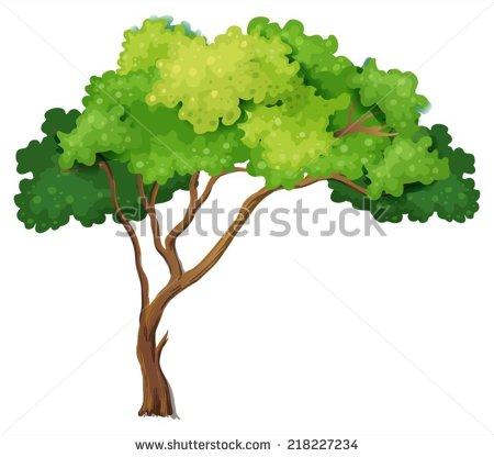 Shade tree clipart.