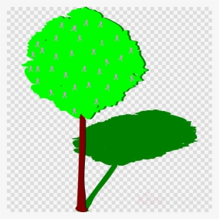 Tree Shadow PNG Images.