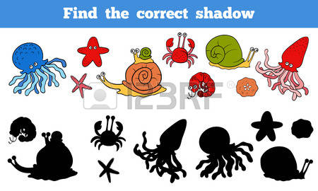 45,466 Shadow Play Cliparts, Stock Vector And Royalty Free Shadow.