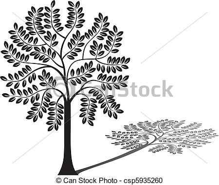 Shadow Of Tree Clipart.