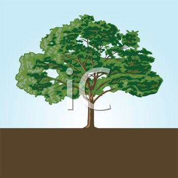 Royalty Free Clip Art Image: Large Shady Tree in Soil Logo Element.