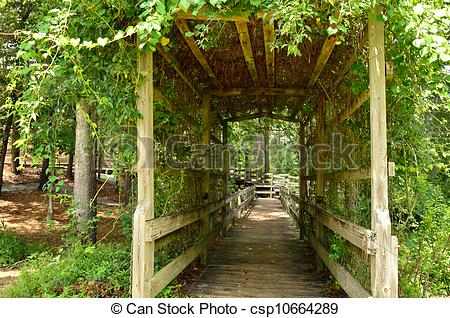 Pictures of Vine covered trellises provide a shady walk for hikers.