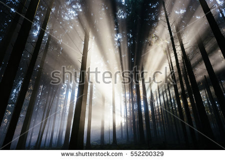 Sunlight Shafts Stock Photos, Royalty.