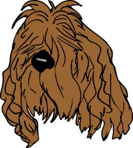 shaggy dog cartoon images
