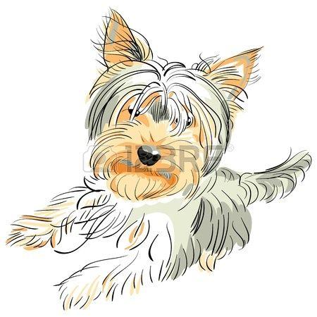 Shaggy Dog Stock Vector Illustration And Royalty Free Shaggy.