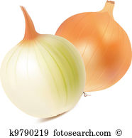 Shallot Clipart Illustrations. 192 shallot clip art vector EPS.