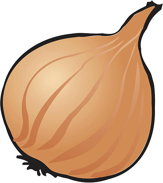 Shallots Clip Art Clip Art, Vector Images & Illustrations.
