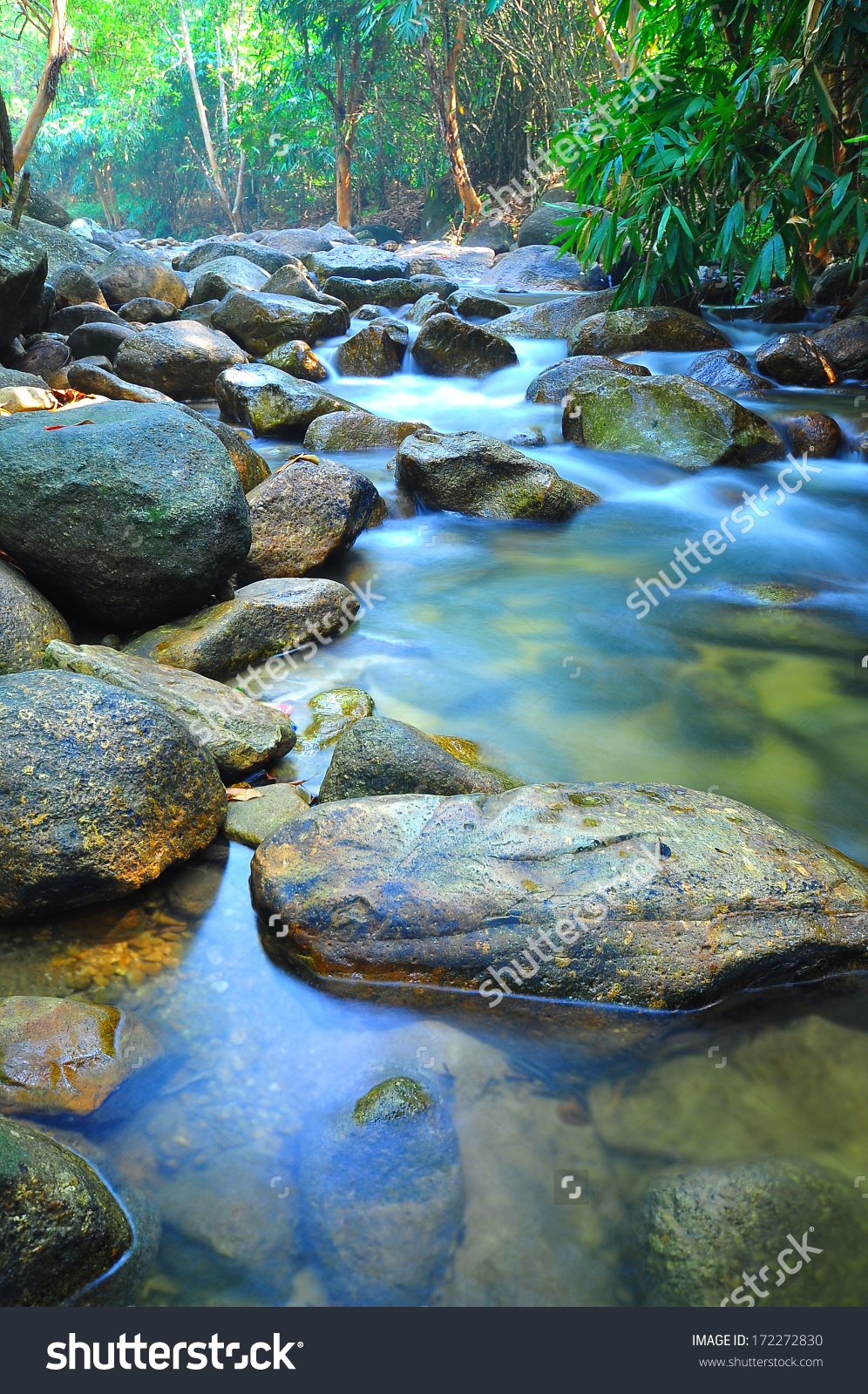Water Flow Through Rocks Shallow Stream Stock Photo 172272830.